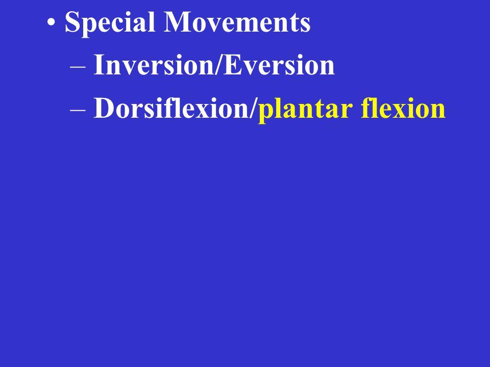 Special Movements – Inversion/Eversion – Dorsiflexion/plantar flexion