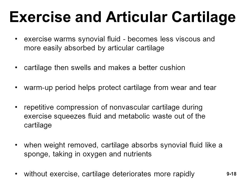 Exercise and Articular Cartilage exercise warms synovial fluid - becomes less viscous and more easily absorbed by articular cartilage cartilage then s