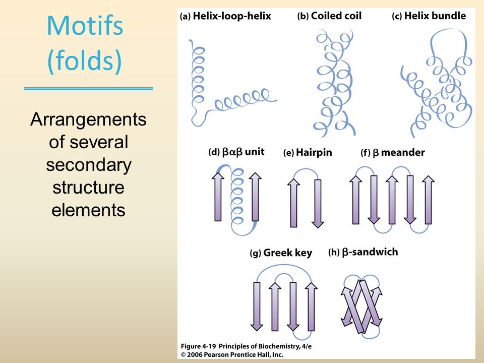 Motifs (folds) Arrangements of several secondary structure elements