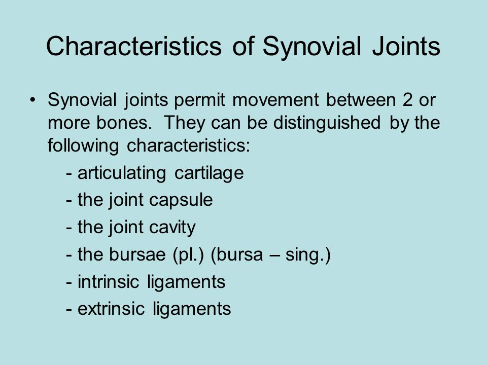 Characteristics of Synovial Joints Synovial joints permit movement between 2 or more bones.