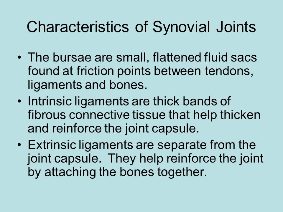 Characteristics of Synovial Joints The bursae are small, flattened fluid sacs found at friction points between tendons, ligaments and bones.