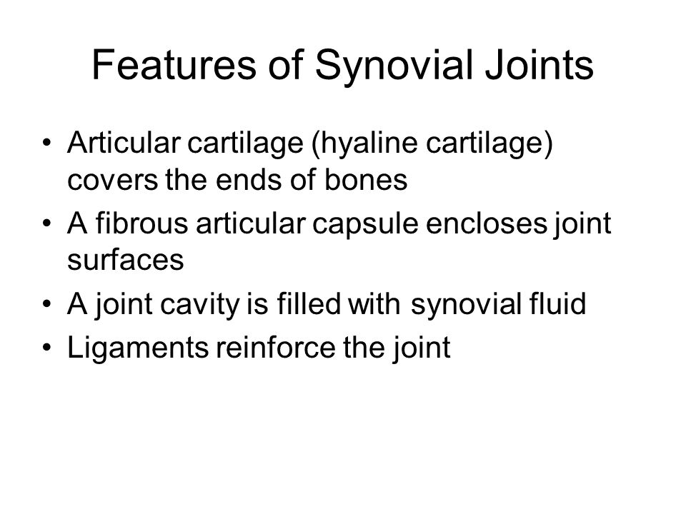 Features of Synovial Joints Articular cartilage (hyaline cartilage) covers the ends of bones A fibrous articular capsule encloses joint surfaces A joi