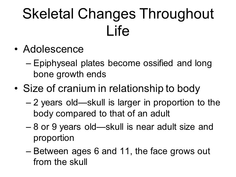 Skeletal Changes Throughout Life Adolescence –Epiphyseal plates become ossified and long bone growth ends Size of cranium in relationship to body –2 y