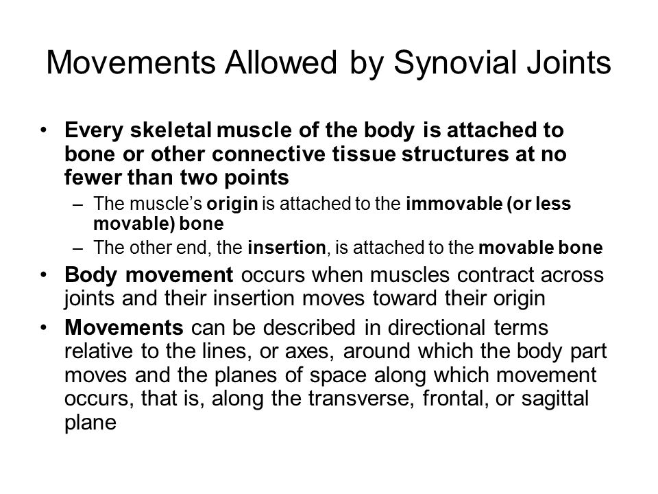 Movements Allowed by Synovial Joints Every skeletal muscle of the body is attached to bone or other connective tissue structures at no fewer than two points –The muscle's origin is attached to the immovable (or less movable) bone –The other end, the insertion, is attached to the movable bone Body movement occurs when muscles contract across joints and their insertion moves toward their origin Movements can be described in directional terms relative to the lines, or axes, around which the body part moves and the planes of space along which movement occurs, that is, along the transverse, frontal, or sagittal plane
