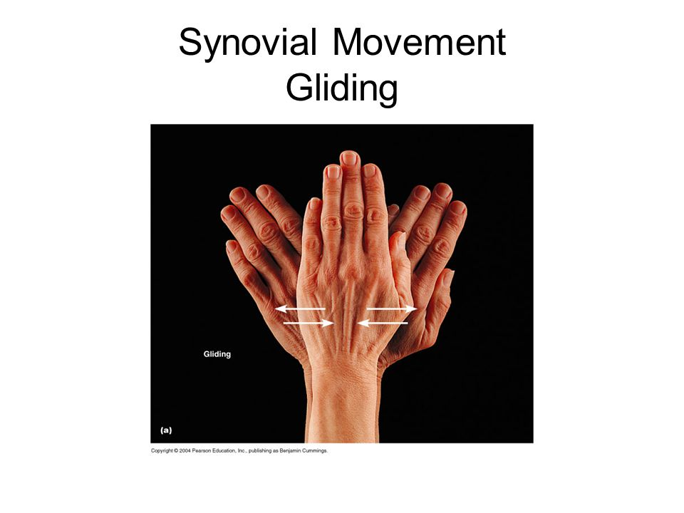 Synovial Movement Gliding