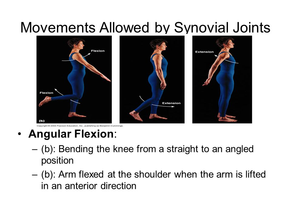 Movements Allowed by Synovial Joints Angular Flexion: –(b): Bending the knee from a straight to an angled position –(b): Arm flexed at the shoulder when the arm is lifted in an anterior direction