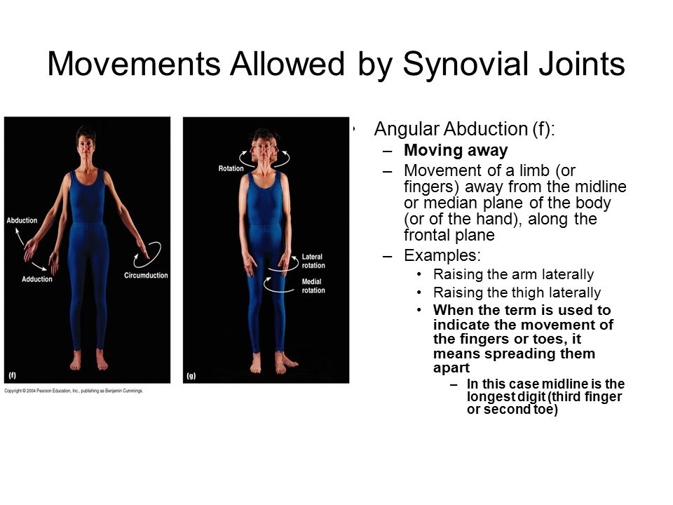 Movements Allowed by Synovial Joints Angular Abduction (f): –Moving away –Movement of a limb (or fingers) away from the midline or median plane of the body (or of the hand), along the frontal plane –Examples: Raising the arm laterally Raising the thigh laterally When the term is used to indicate the movement of the fingers or toes, it means spreading them apart –In this case midline is the longest digit (third finger or second toe)