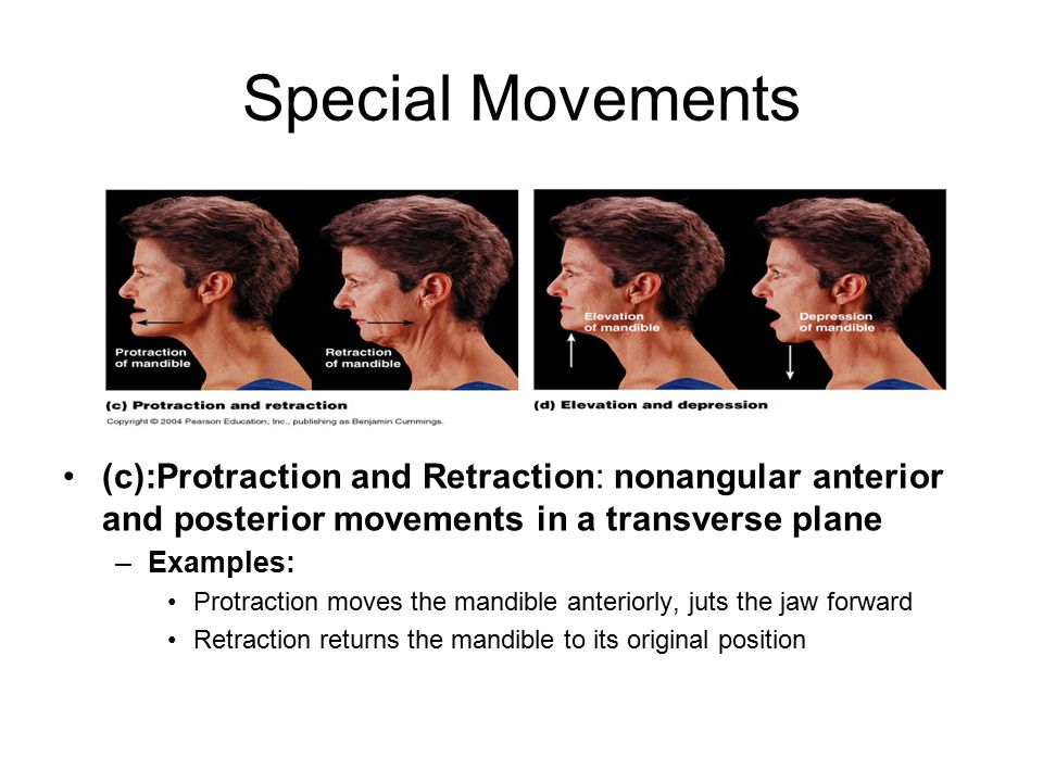 Special Movements (c):Protraction and Retraction: nonangular anterior and posterior movements in a transverse plane –Examples: Protraction moves the mandible anteriorly, juts the jaw forward Retraction returns the mandible to its original position