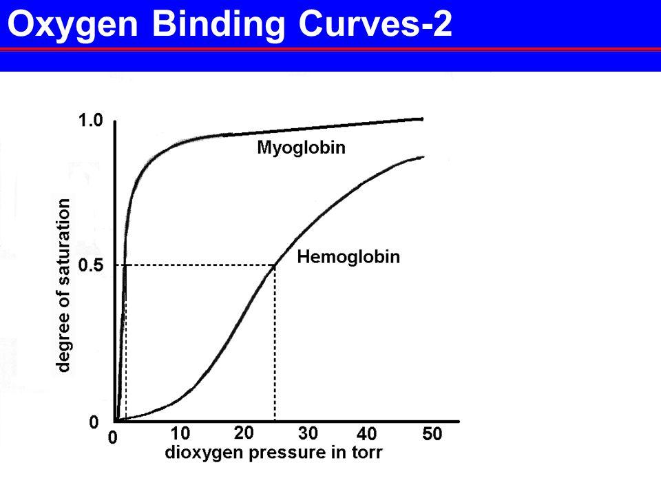 5P2-37 Oxygen Binding Curves-2