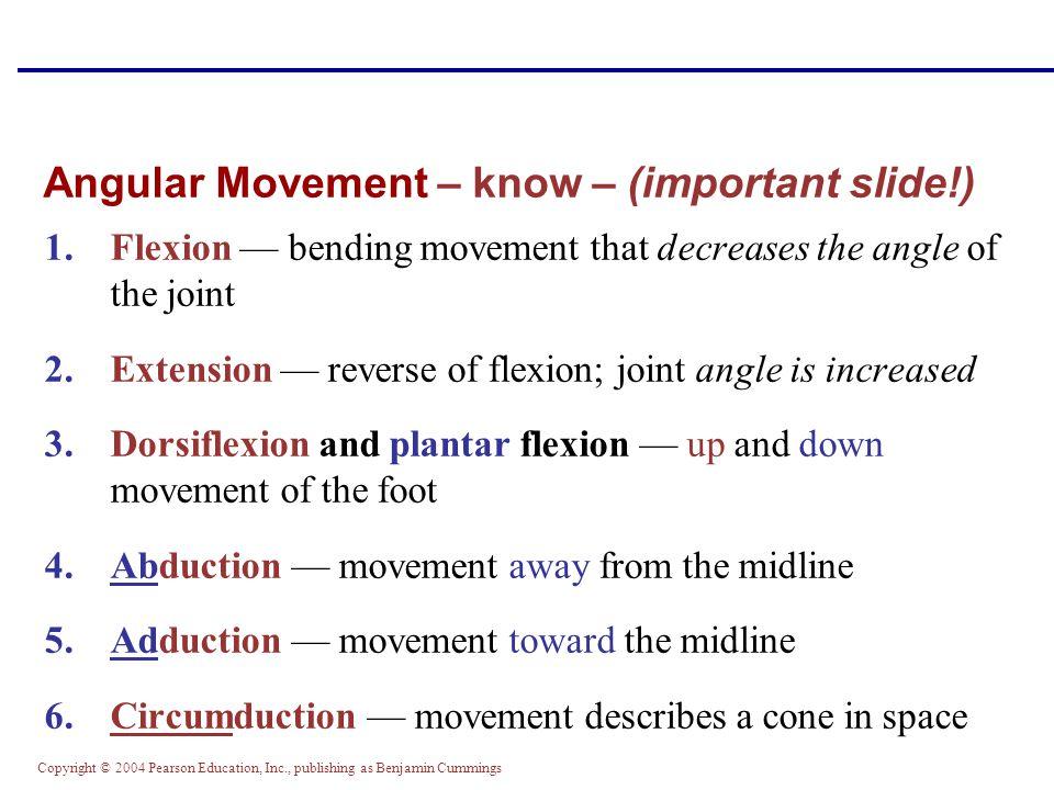 Copyright © 2004 Pearson Education, Inc., publishing as Benjamin Cummings Angular Movement – know – (important slide!) 1.Flexion — bending movement th