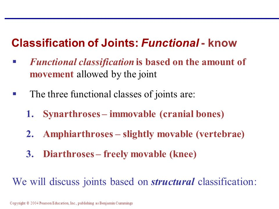 Copyright © 2004 Pearson Education, Inc., publishing as Benjamin Cummings Classification of Joints: Functional - know  Functional classification is b