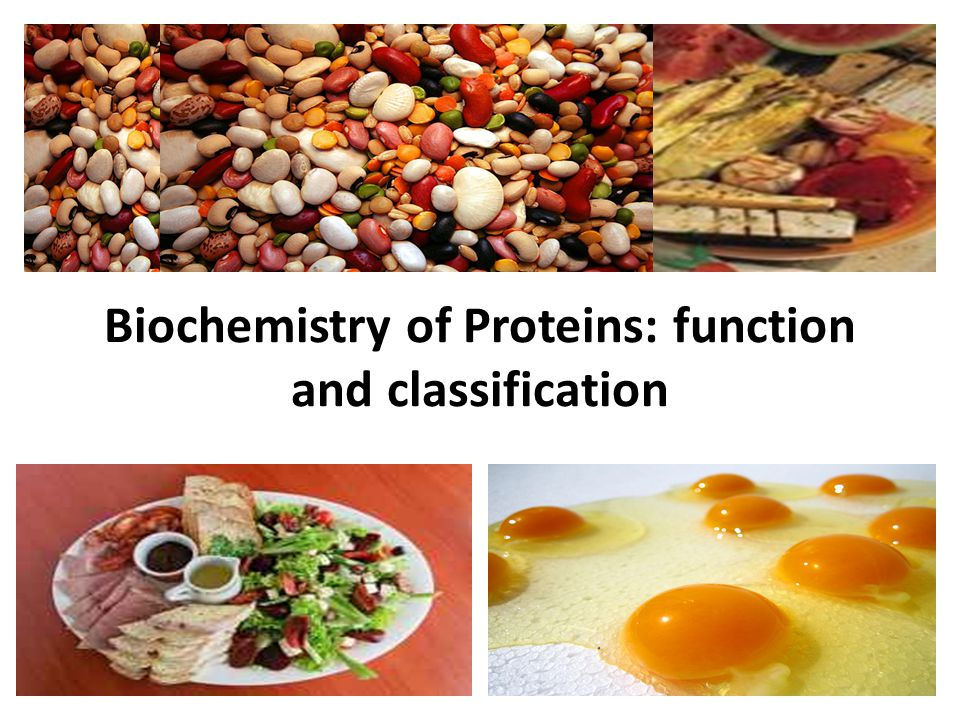 Biochemistry of Proteins: function and classification