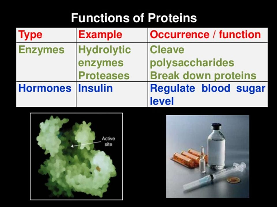 Lipoproteins Blood plasma lipoproteins are prominent examples of the class of proteins conjugated with lipid.
