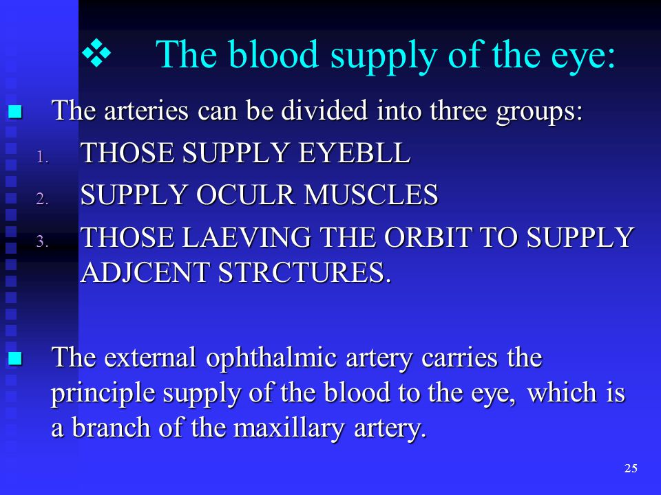25  The blood supply of the eye: The arteries can be divided into three groups: The arteries can be divided into three groups: 1.