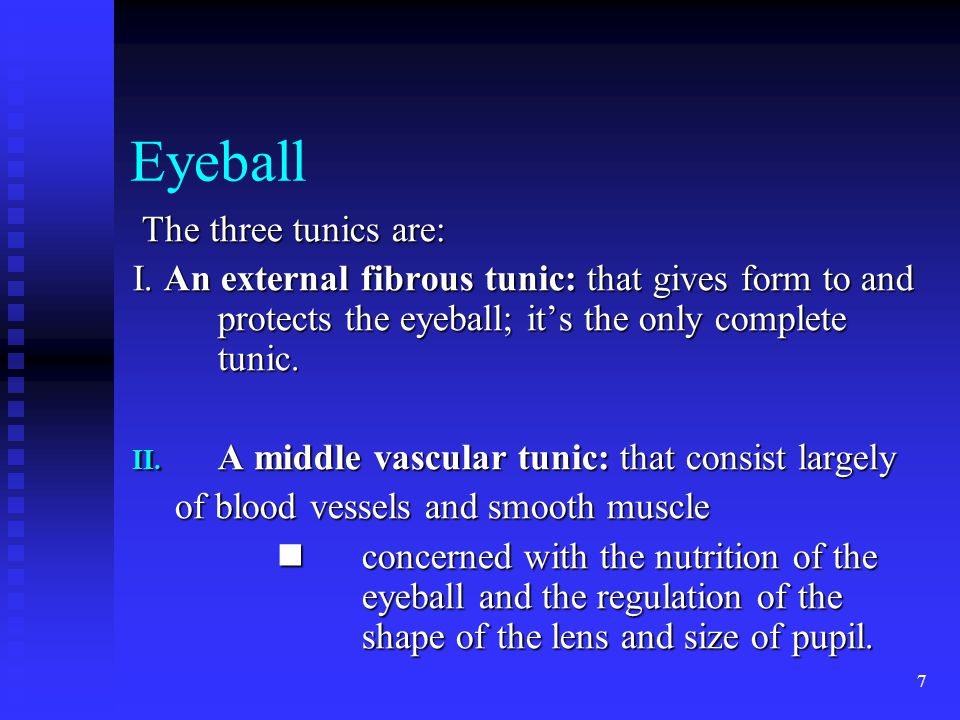 7 Eyeball The three tunics are: The three tunics are: I.