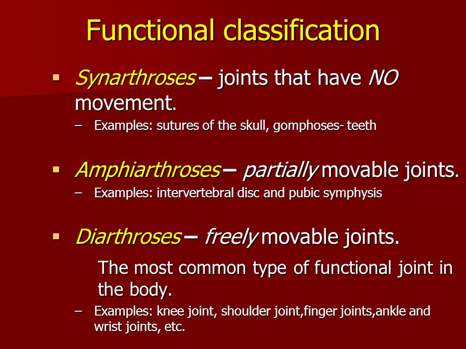 Functional classification  Synarthroses – joints that have NO movement. –Examples: sutures of the skull, gomphoses- teeth  Amphiarthroses – partiall