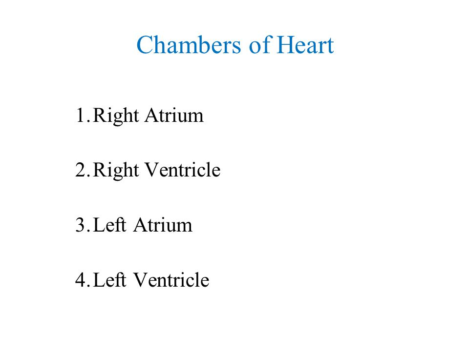 Chambers of Heart 1.Right Atrium 2.Right Ventricle 3.Left Atrium 4.Left Ventricle
