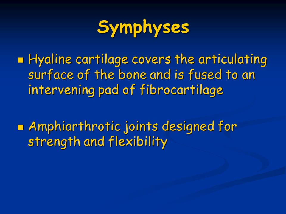 Symphyses Hyaline cartilage covers the articulating surface of the bone and is fused to an intervening pad of fibrocartilage Hyaline cartilage covers
