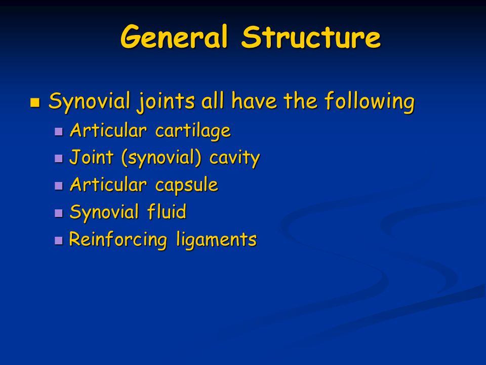 General Structure Synovial joints all have the following Synovial joints all have the following Articular cartilage Articular cartilage Joint (synovia