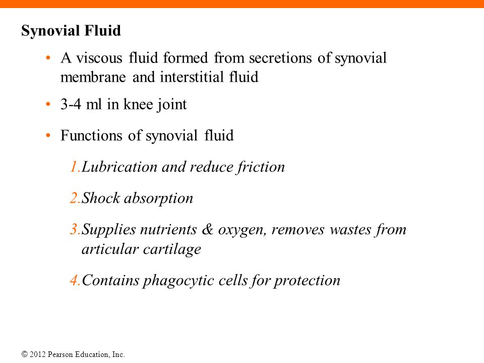 © 2012 Pearson Education, Inc. Synovial Fluid A viscous fluid formed from secretions of synovial membrane and interstitial fluid 3-4 ml in knee joint