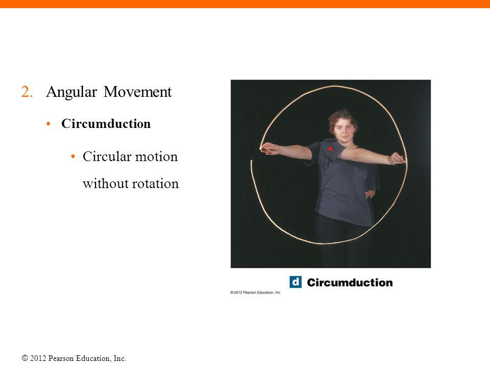 © 2012 Pearson Education, Inc. 2.Angular Movement Circumduction Circular motion without rotation