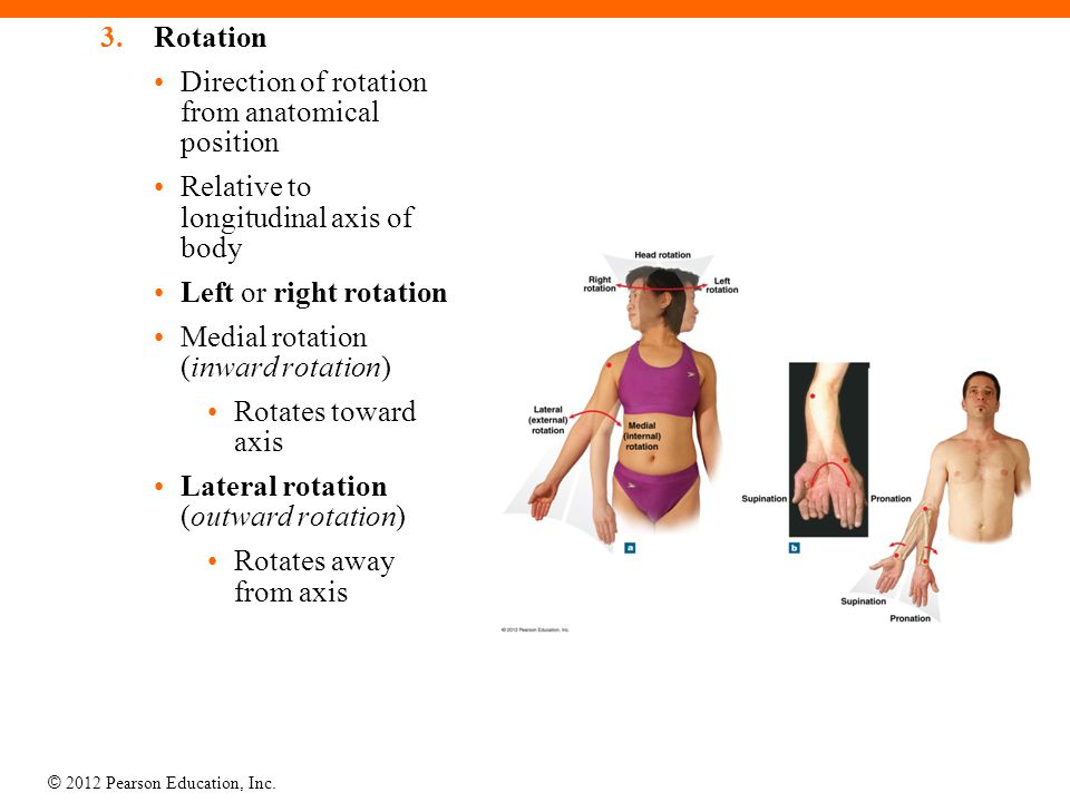 © 2012 Pearson Education, Inc. 3.Rotation Direction of rotation from anatomical position Relative to longitudinal axis of body Left or right rotation