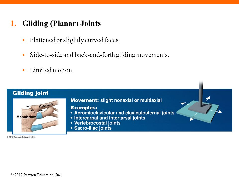 © 2012 Pearson Education, Inc. 1.Gliding (Planar) Joints Flattened or slightly curved faces Side-to-side and back-and-forth gliding movements. Limited