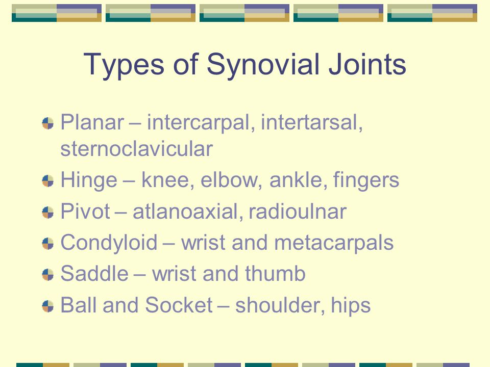 Types of Synovial Joints Planar – intercarpal, intertarsal, sternoclavicular Hinge – knee, elbow, ankle, fingers Pivot – atlanoaxial, radioulnar Condyloid – wrist and metacarpals Saddle – wrist and thumb Ball and Socket – shoulder, hips