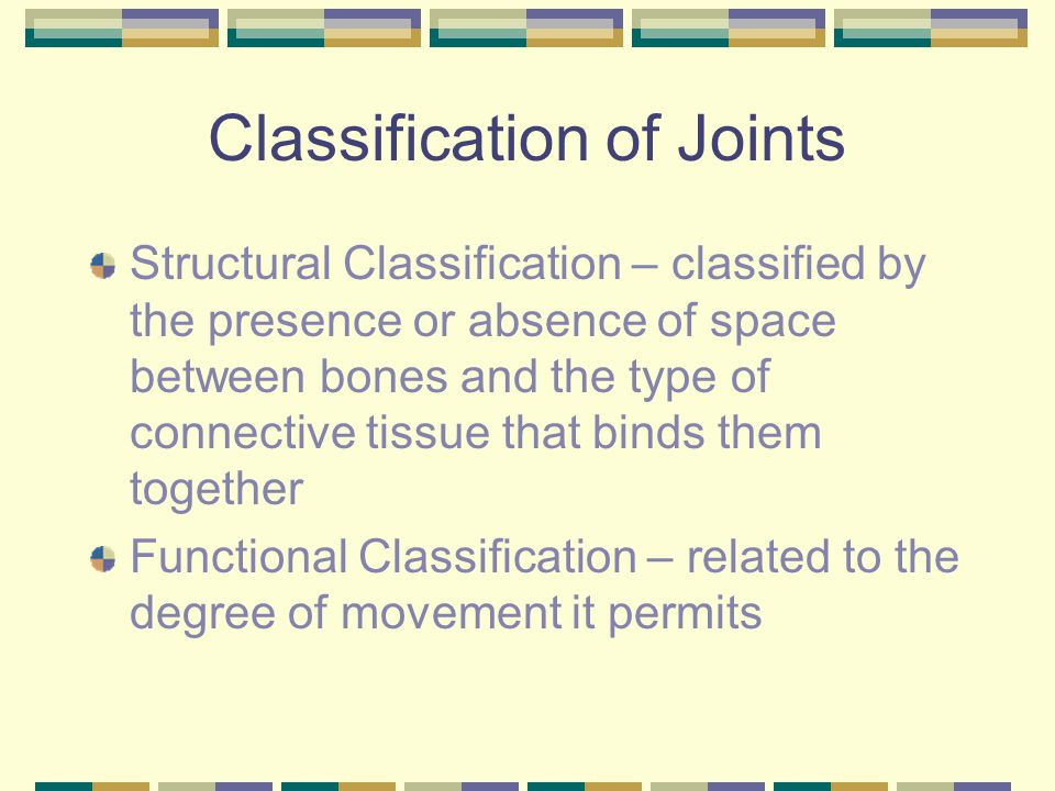 Classification of Joints Structural Classification – classified by the presence or absence of space between bones and the type of connective tissue that binds them together Functional Classification – related to the degree of movement it permits