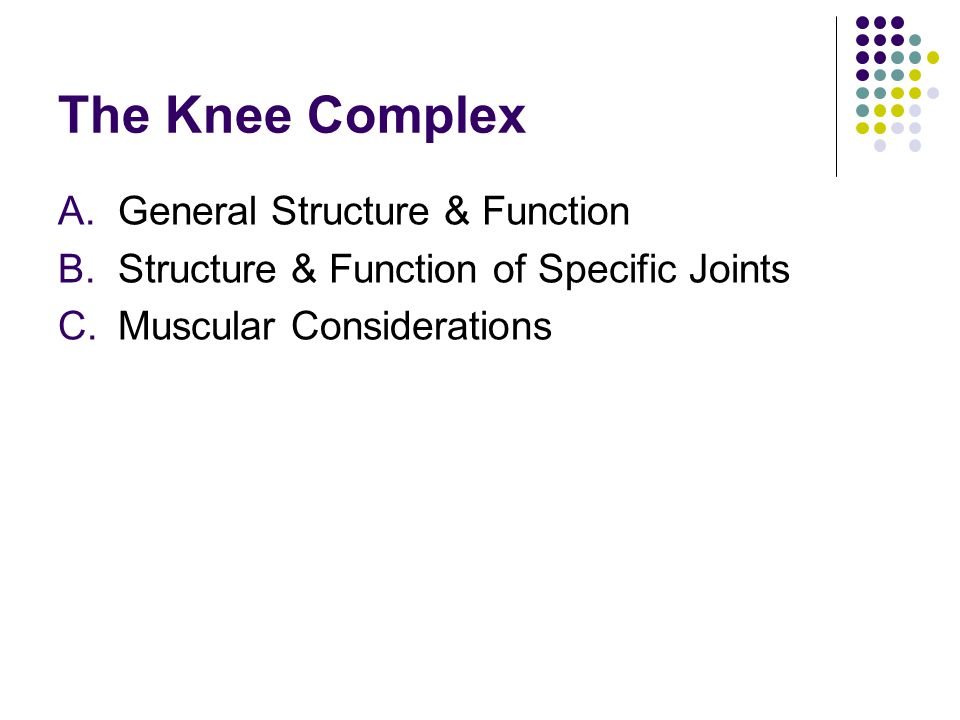 A.General Structure & Function B.Structure & Function of Specific Joints C.Muscular Considerations