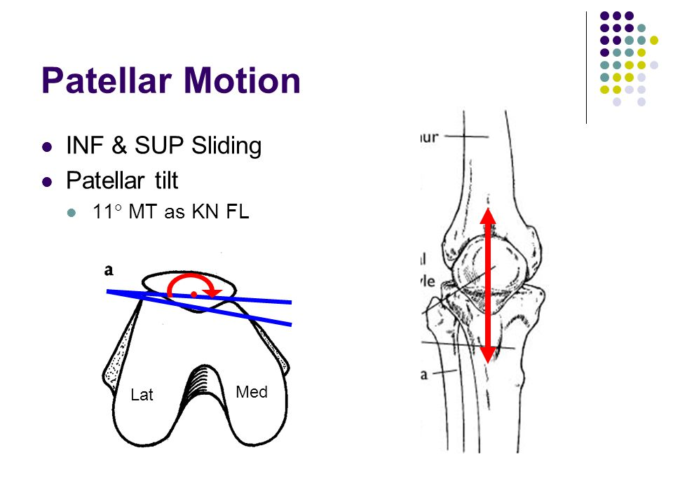 Patellar Motion INF & SUP Sliding Patellar tilt 11  MT as KN FL Med Lat