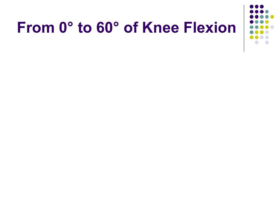From 0° to 60° of Knee Flexion