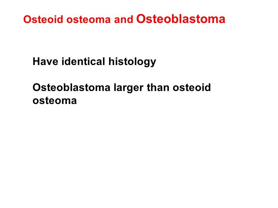 Osteoid osteoma and Osteoblastoma Have identical histology Osteoblastoma larger than osteoid osteoma