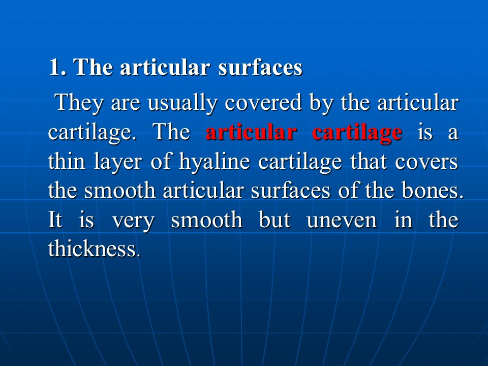 1. The articular surfaces 1.