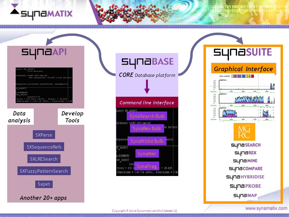 Command line interface CORE Database platform SynaRex Bulk SynaProbe Bulk SynaSearch Bulk SynaMer SynaFrag SXSequenceRefs SXLRESearch SXFuzzyPatternSearch Sxpet SXParse Data analysis Develop Tools Another 20+ apps Graphical Interface