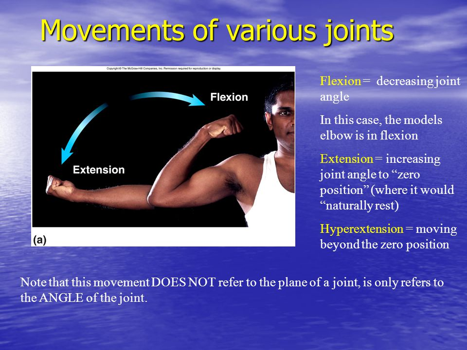 """Movements of various joints Flexion = decreasing joint angle In this case, the models elbow is in flexion Extension = increasing joint angle to """"zero"""