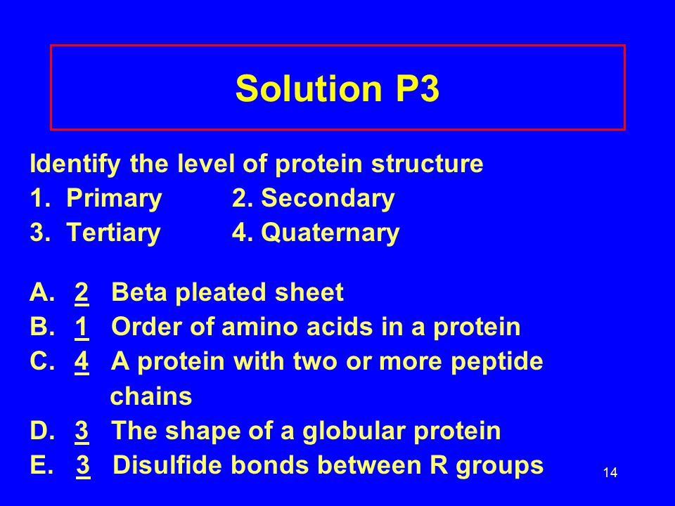 14 Solution P3 Identify the level of protein structure 1. Primary2. Secondary 3. Tertiary 4. Quaternary A.2 Beta pleated sheet B.1 Order of amino acid