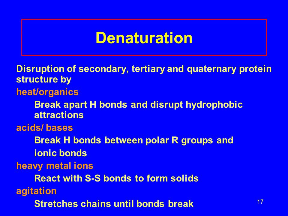 17 Denaturation Disruption of secondary, tertiary and quaternary protein structure by heat/organics Break apart H bonds and disrupt hydrophobic attractions acids/ bases Break H bonds between polar R groups and ionic bonds heavy metal ions React with S-S bonds to form solids agitation Stretches chains until bonds break