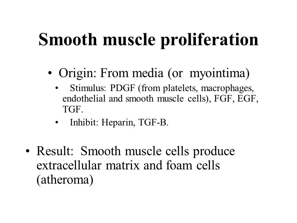 Smooth muscle proliferation Origin: From media (or myointima) Stimulus: PDGF (from platelets, macrophages, endothelial and smooth muscle cells), FGF, EGF, TGF.