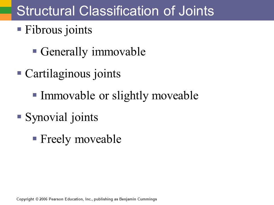 Copyright © 2006 Pearson Education, Inc., publishing as Benjamin Cummings Structural Classification of Joints  Fibrous joints  Generally immovable 