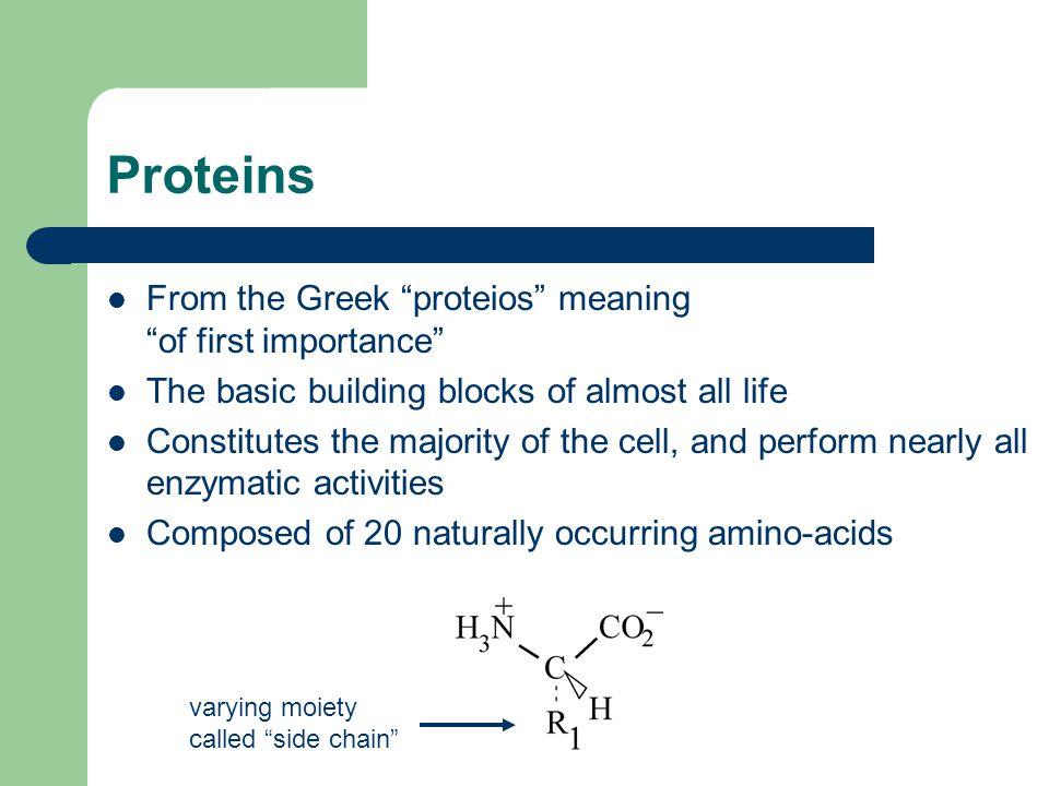 Protein Synthesis In-vivo 1.Transcription: DNA  messenger RNA (mRNA) 2.