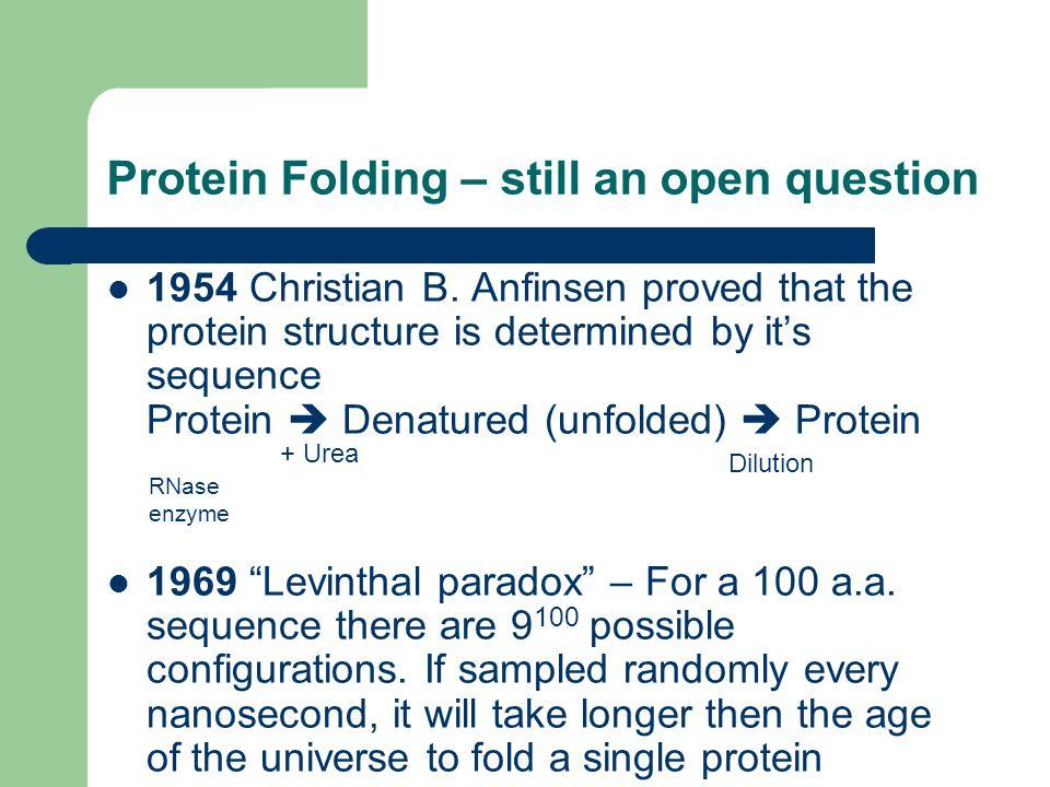 Protein Folding – still an open question 1954 Christian B.
