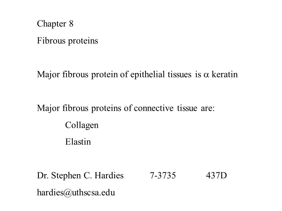 Chapter 8 Fibrous proteins Major fibrous protein of epithelial tissues is  keratin Major fibrous proteins of connective tissue are: Collagen Elastin Dr.