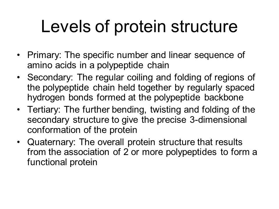 Bonds involved LvlBondsBetween 1PeptideAmino acids 2Hydrogen-N-H and –C=O groups on pp backbone 3Hydrogen bonds, hydrophobic interactions, ionic bonds, disulphide bonds R-groups of amino acid residues 4