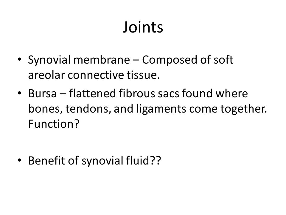 Joints Synovial membrane – Composed of soft areolar connective tissue. Bursa – flattened fibrous sacs found where bones, tendons, and ligaments come t