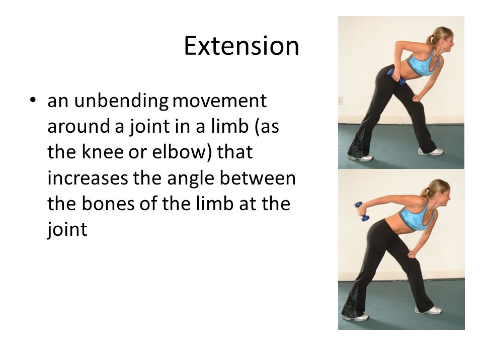 Extension an unbending movement around a joint in a limb (as the knee or elbow) that increases the angle between the bones of the limb at the joint