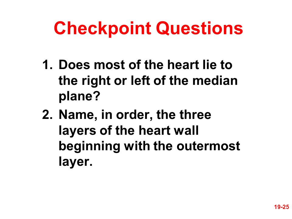 Checkpoint Questions 1.Does most of the heart lie to the right or left of the median plane? 2.Name, in order, the three layers of the heart wall begin