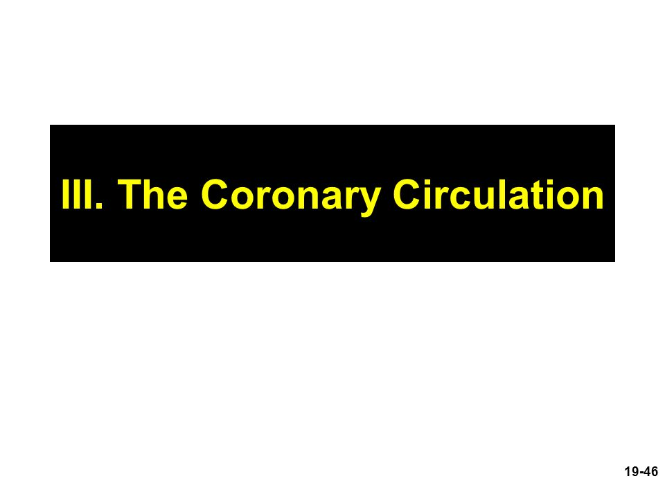 III. The Coronary Circulation 19-46