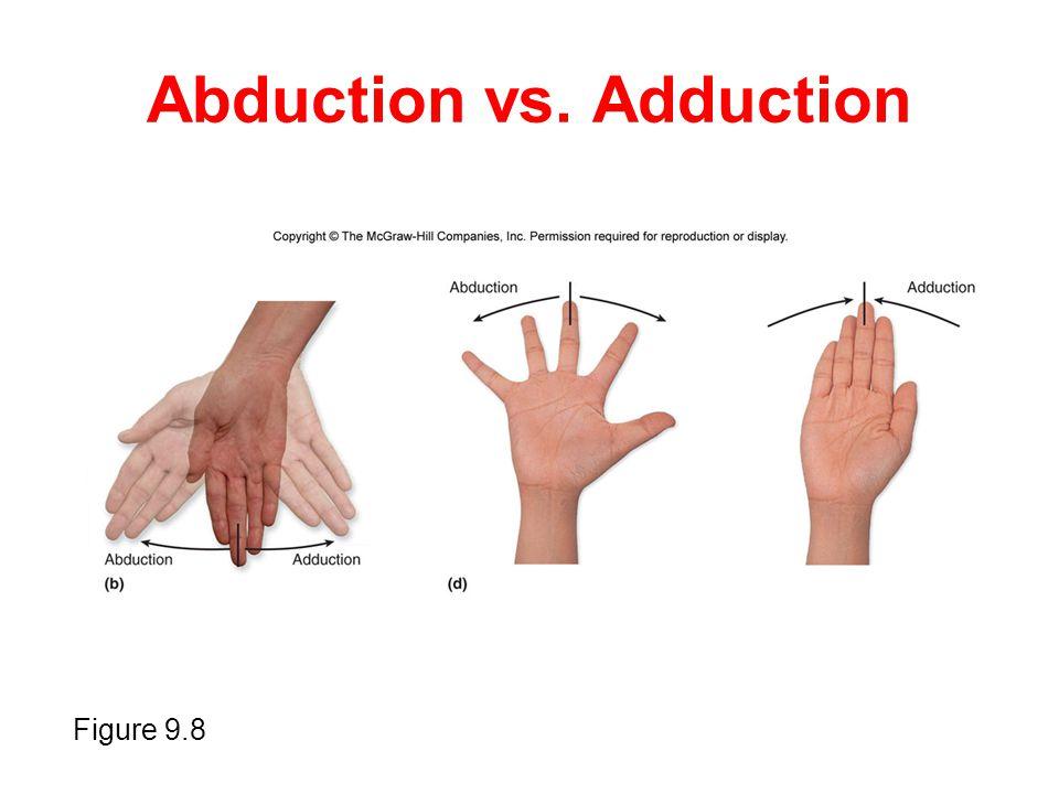 Abduction vs. Adduction Figure 9.8