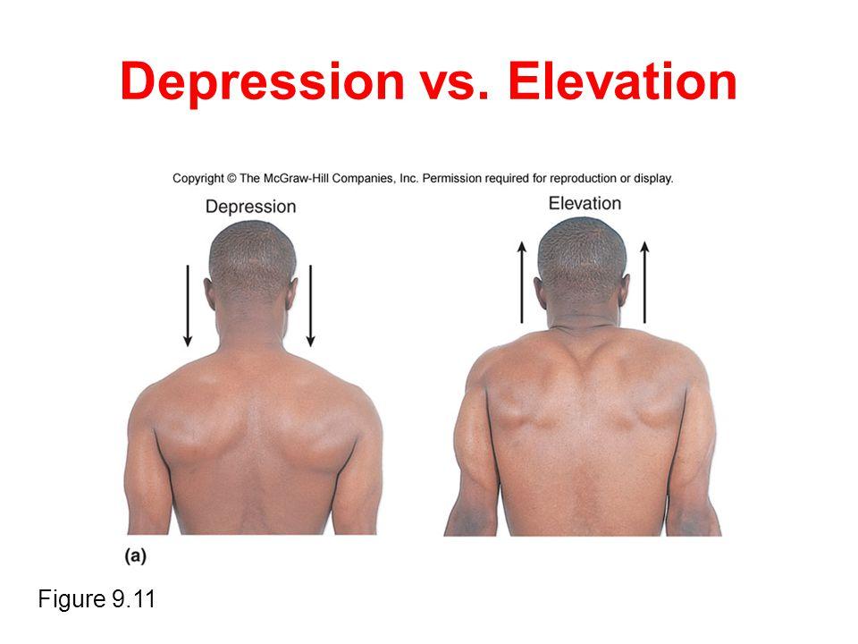 Depression vs. Elevation Figure 9.11